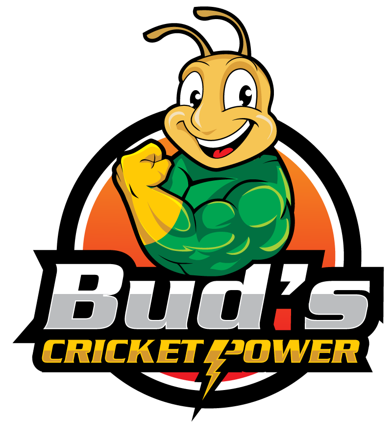 Bud's Cricket Power Logo - Small